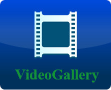 gvideo